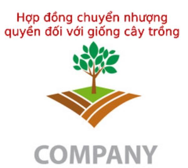 Hop-dong-chuyen-nhuong-quyen-doi-voi-giong-cay-trong-theo-quy-dinh
