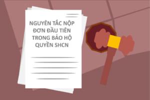 Nguyen-tac-nop-don-dau-tien