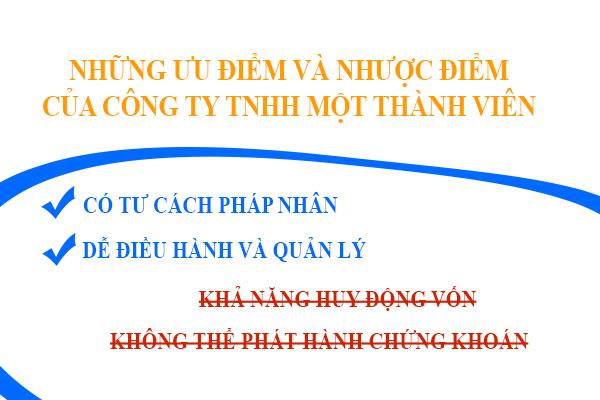 Nhung Uu Diem Va Nhuoc Diem Cua Cong Ty Tnhh Mot Thanh Vien
