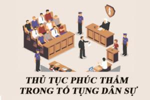 Thu Tuc Phuc Tham Trong To Tung Dan Su