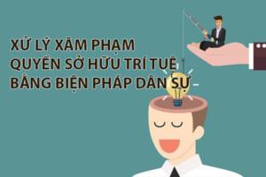 Xu Ly Hanh Vi Xam Pham Quyen So Huu Tri Tue Bang Bien Phap Dan Su